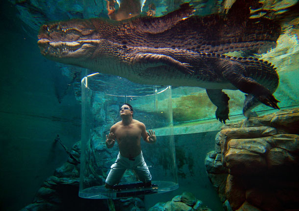 Cage of Death, Crocosaurus Cove, Australia