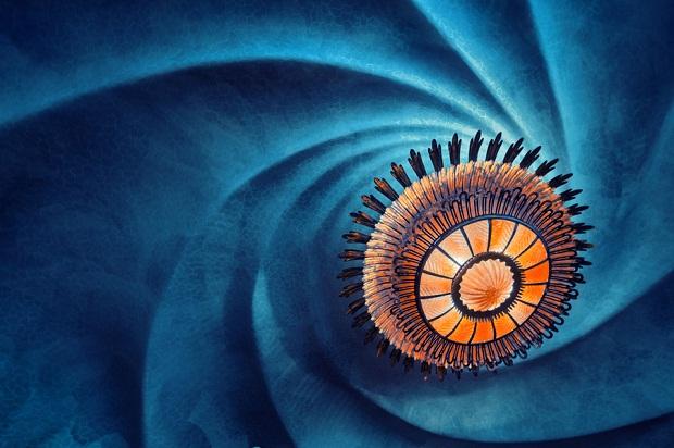 Casa Batllo Gaudi Swirl