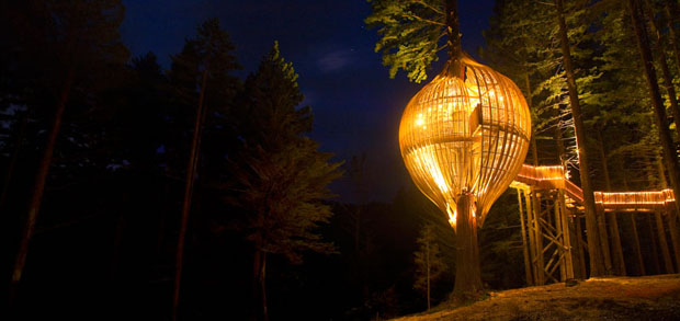 The Redwoods Treehouse