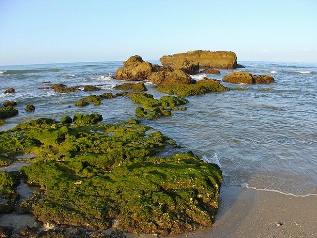 Albufeira Coast