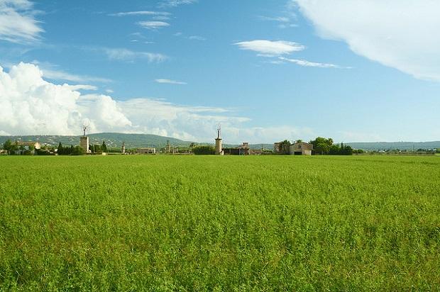 Majorca Windmills