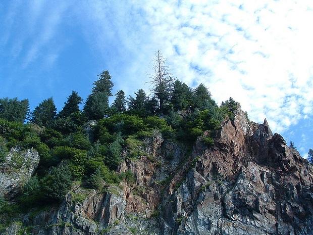 Kenai Fjords Rocky Cliffs