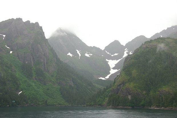 Misty Kenai Fjords