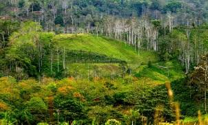 Costa Rica Beautiful Landscape