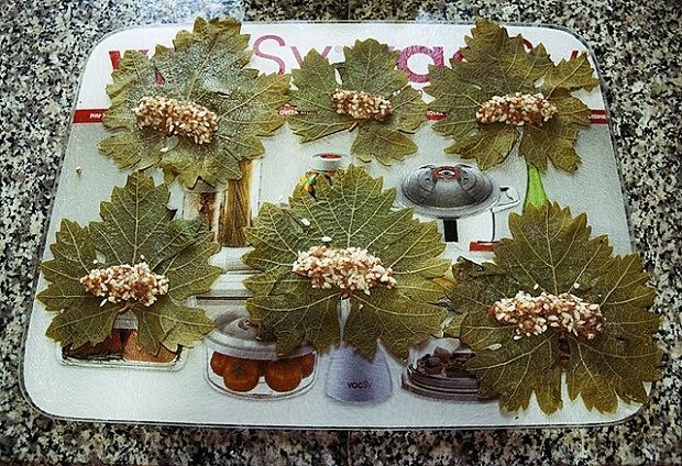 The grape leaves and stuffing