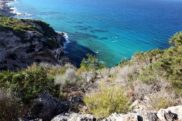 Formentera Shore