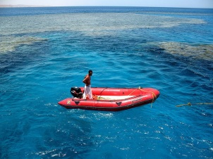 Red Boat in Red Sea