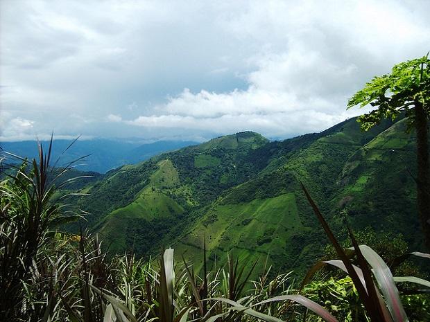 Salamina Hills