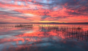 Albufera Natural Park Glorious sunset