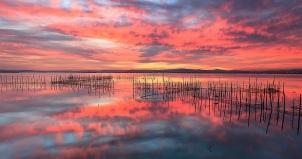 Albufera Natural Park Glorious sunset