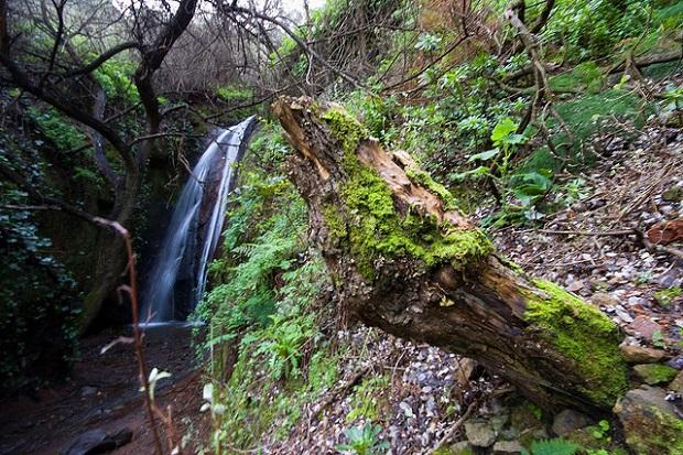 Cuenca nature